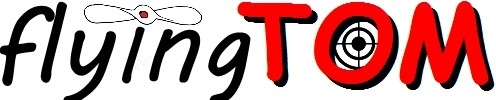 Logo Flyingtom jpg